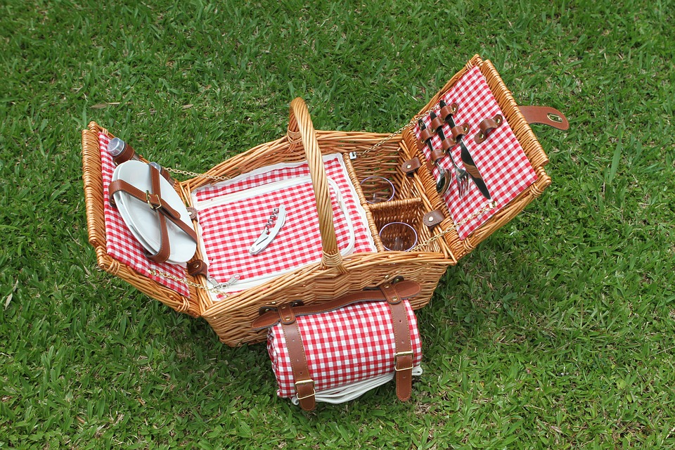 Family Picnic June 2